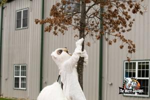 2017 White Squirrel Classic-5
