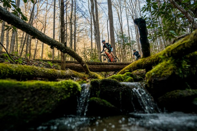 PisgahStageRace_4-12-18_176777